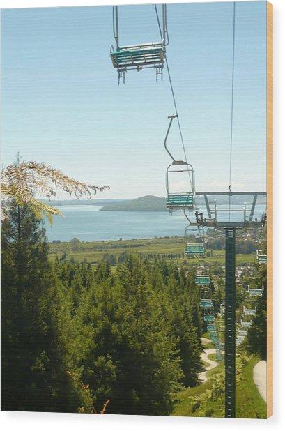Chair Ride Wood Print by Amy Jayne Roper
