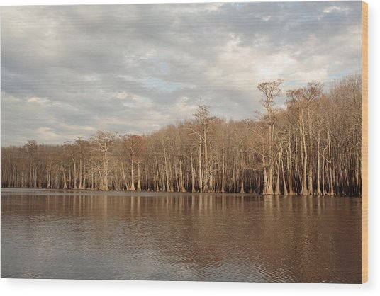 Wood Print featuring the photograph Champion Lake by Daniel Reed