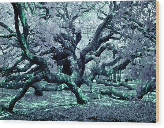 Charleston's Angel Oak Wood Print