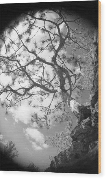 Charlie's Tree Wood Print by Artist Orange