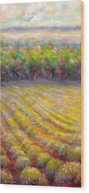 Chateau De Berne Vineyard Wood Print