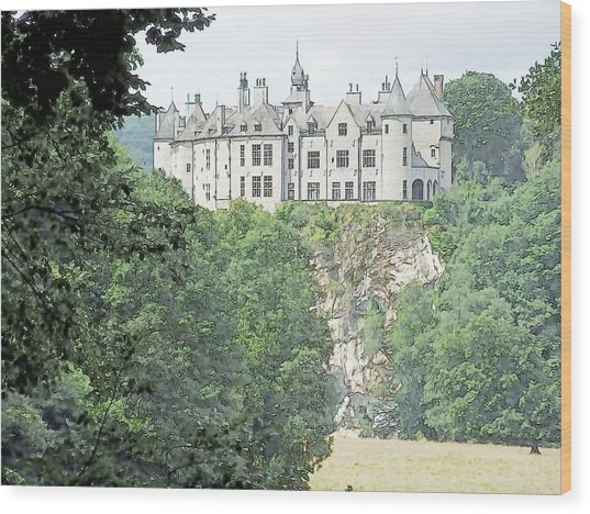 Chateau De Walzin Belgium Wood Print