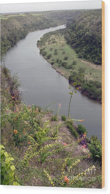 Chavon River View Wood Print by Chris Hill