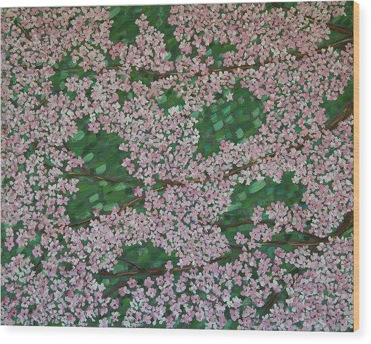 Cherry Blossoms Wood Print by Karen Alonge