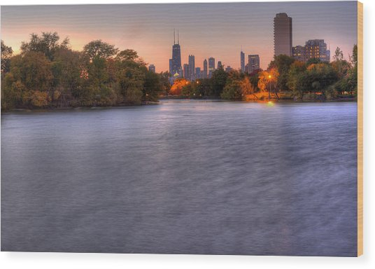 Chicago Skyline From Lincoln Park Wood Print