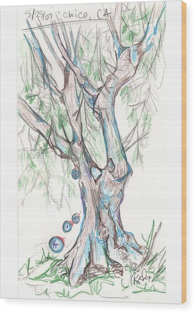 Chico Ca River Tree Wood Print by Carol Rashawnna Williams