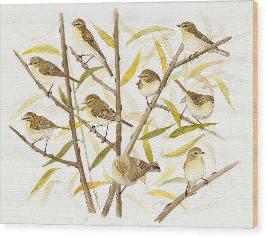 Chiffchaff's Migration Wood Print by Deak Attila