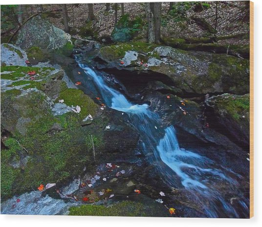 Childs Brook Summer 13 Wood Print by George Ramos