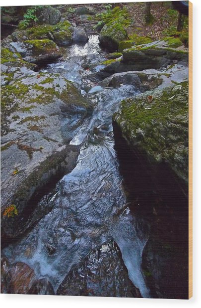 Childs Brook Summer 21 Wood Print by George Ramos