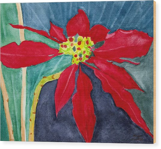 Christmas Flower Wood Print by Charlotte Hickcox