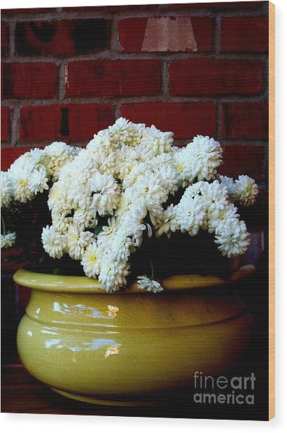 Chrysanthemums In A Yellow Pot Wood Print