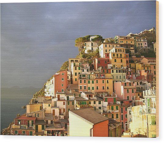 Cinque Terre Italy Fine Art Print Wood Print by Ian Stevenson