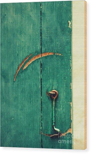 Circle Of Life Wood Print by Vishakha Bhagat