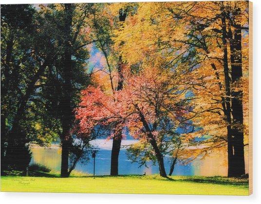Clear Creek Autumn Wood Print by Darlene Bell