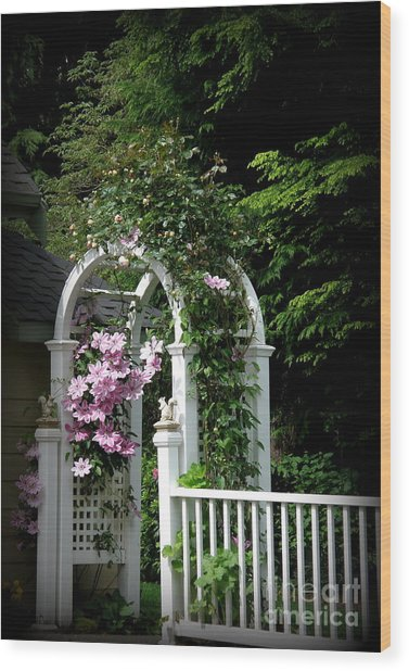 Clematis Arch Wood Print by Tanya  Searcy