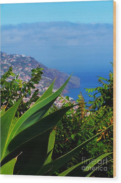 Cliffs Of Madeira Wood Print by Patricia Land