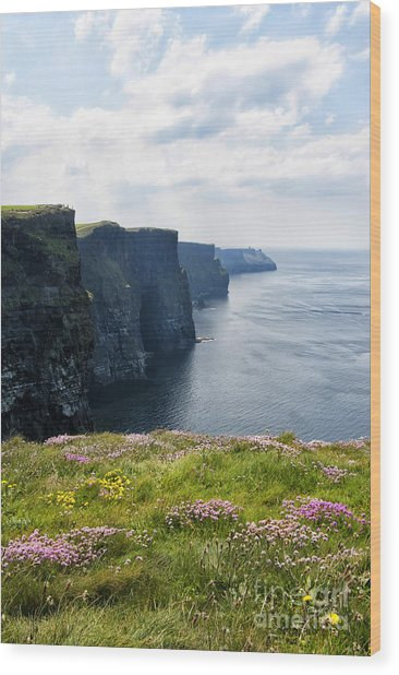 Cliffs Of Moher In Spring Wood Print