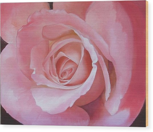 Close Up Painting Of Pink Rose Wood Print