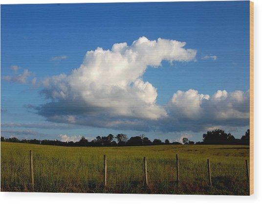 Cloud Wood Print by Beverly Hammond