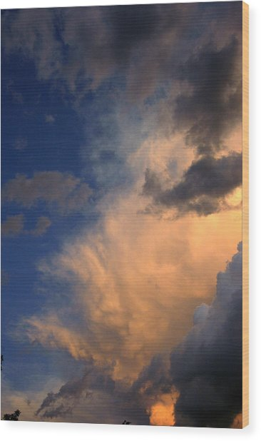 Clouds In The Spring Sky Wood Print