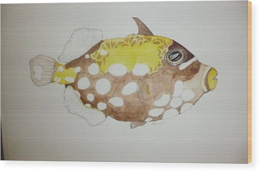 Clown Triggerfish Wood Print by Tim Forrester