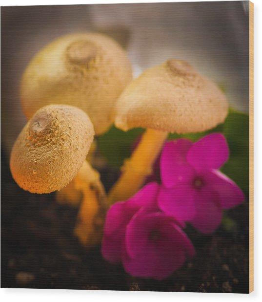 Clustered Fungi Wood Print by Gene Hilton