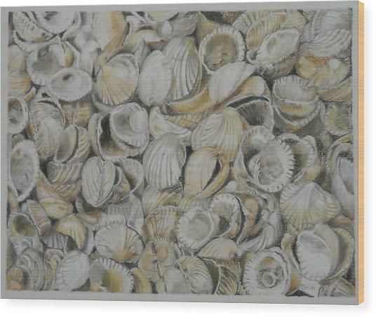 Cockle Shells Wood Print