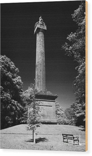 Cole Memorial Monument Enniskillen Wood Print by Joe Fox