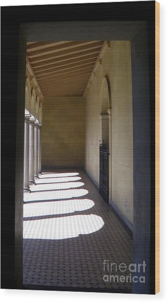 Colonnade  4 Wood Print by Tanya  Searcy