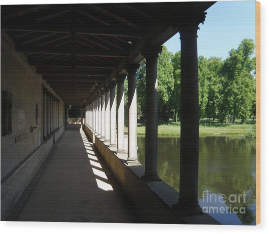 Colonnade  5 Wood Print by Tanya  Searcy
