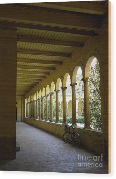Colonnade Wood Print by Tanya  Searcy