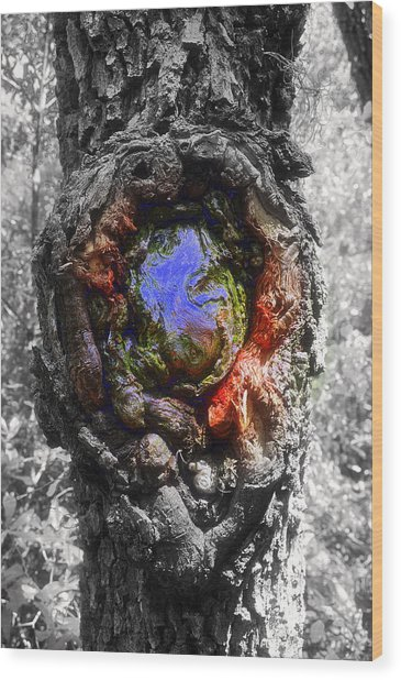 Color Genesis Wood Print