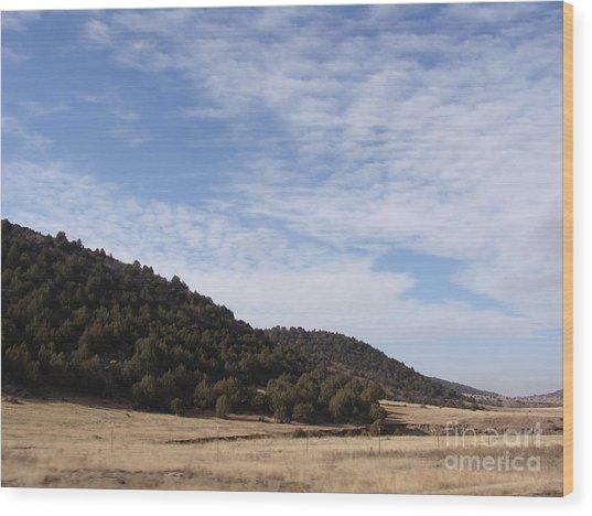 Colorado Outlands Wood Print by Jack Norton