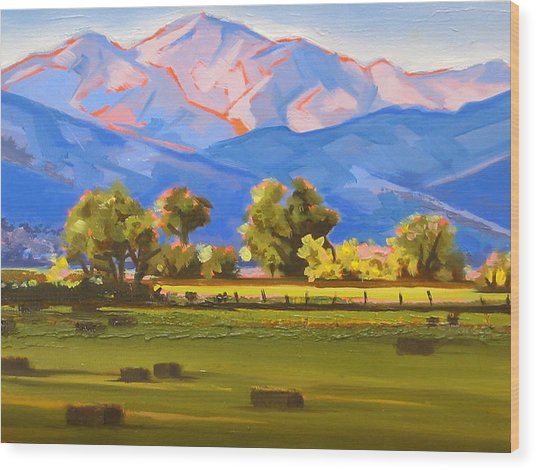 Colorado Pasture Wood Print
