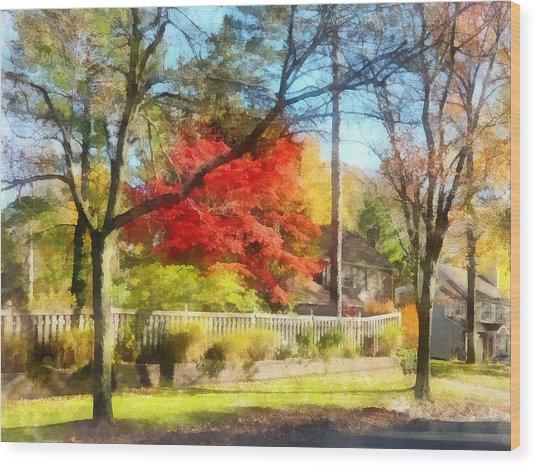 Colorful Autumn Street Wood Print by Susan Savad