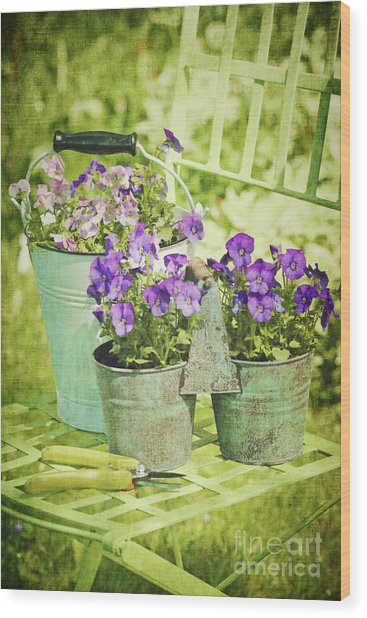 Colorful Spring Flowers On Garden Chair Wood Print