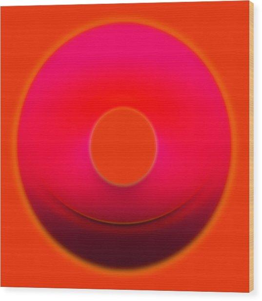 Colors 09 Wood Print by Li   van Saathoff