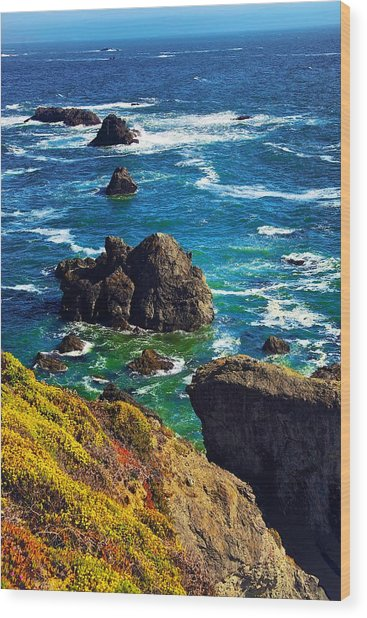 Colors Of The Pacific Wood Print
