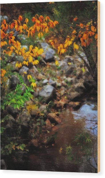 Colors On The Creek Wood Print by Toni Hopper