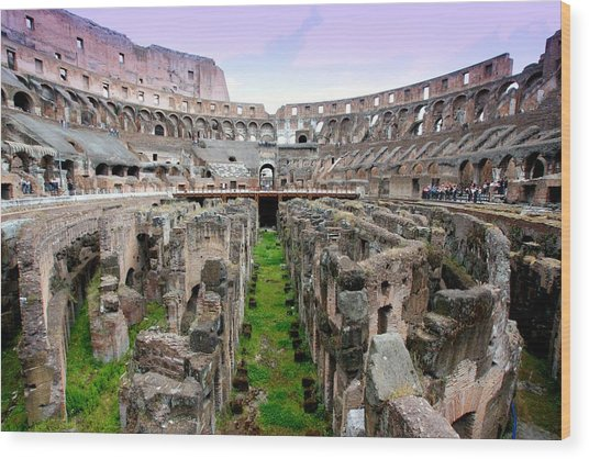 Colosseum Wood Print by Luiz Felipe Castro