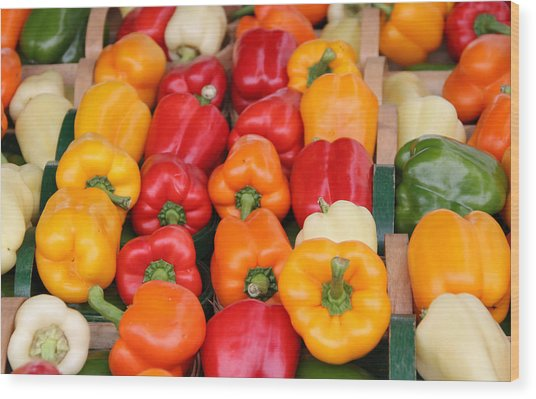 Colourful Peppers Wood Print by Kim French