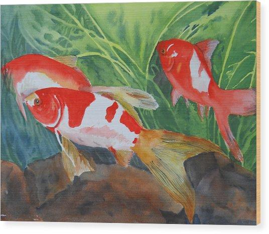 Comet Goldfish Wood Print