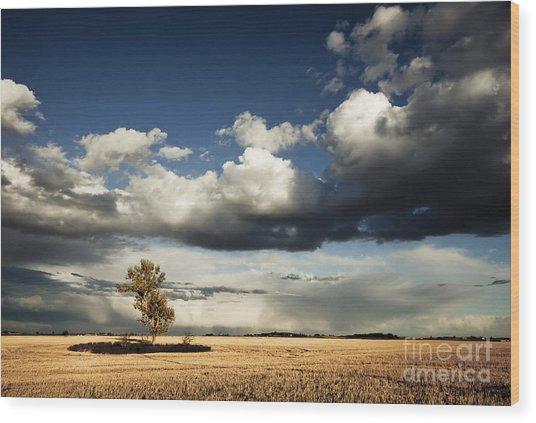 Coming Storm Wood Print