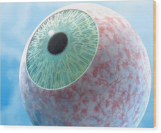 Conjunctivitis, Conceptual Artwork Wood Print by David Mack