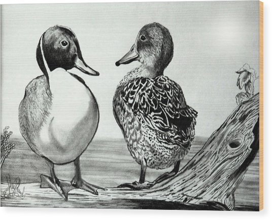 Conversation Between Feathered Friends Wood Print