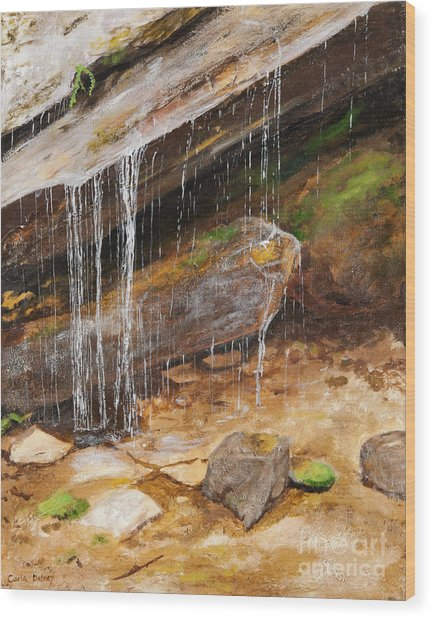 Cool Water Wood Print by Carla Dabney