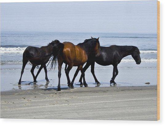Corolla Beach Horses Wood Print