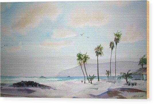 Coronado Afternoon Wood Print