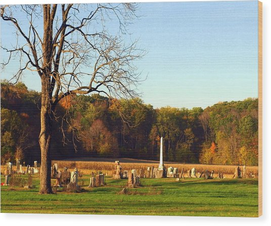 Country Cemetery Wood Print by Mike Stanfield
