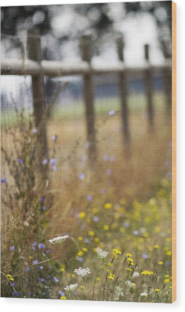Country Fence Wood Print by Rebecca Cozart